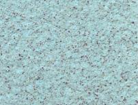 雷竞技注册真石漆使用10年后