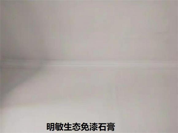 雷竞技官网石膏厂家.jpg